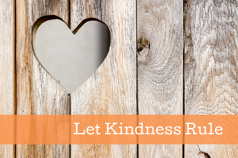 Let Kindness Rule - blog image