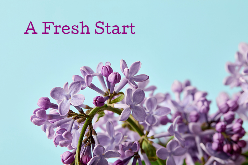 A Fresh Start - blog image