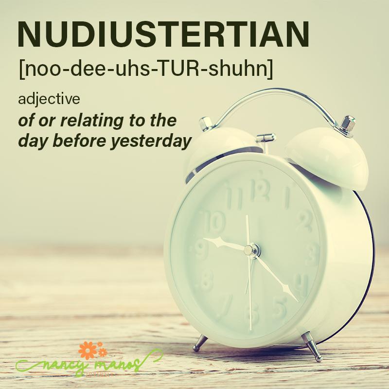 Vocabulary Fun - Nudiustertian