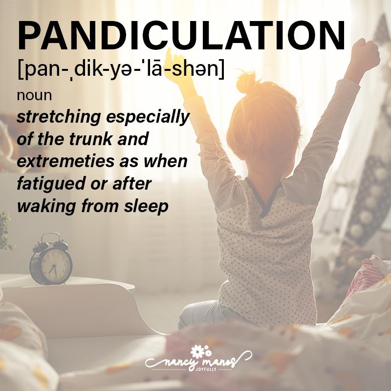 Vocabulary Fun - Pandiculation