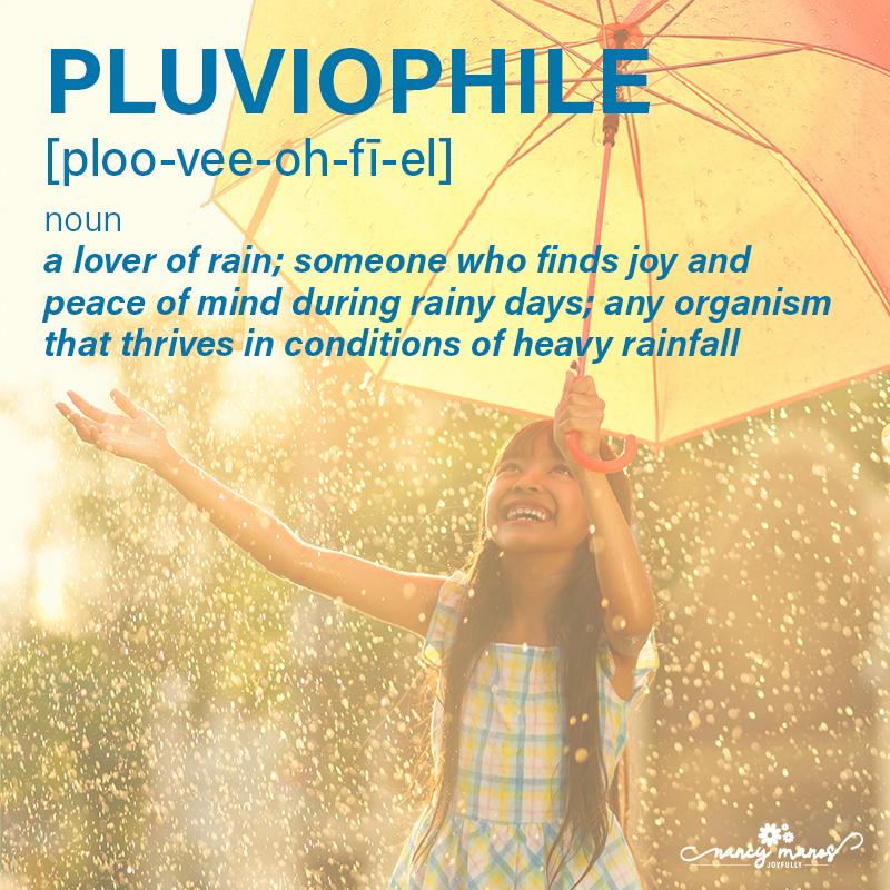 Vocabulary Fun - Pluviophile